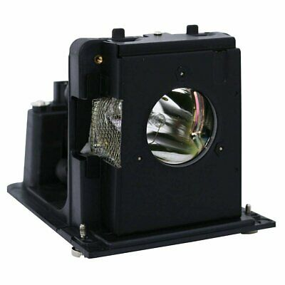 Optoma BL-FU250E Philips Projector Lamp Module