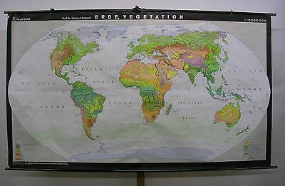 Schulwandkarte Beautiful Old World Map Vegetation 238x139cm Vintage 1975