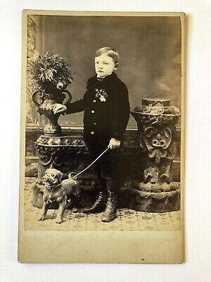 Cabinet Card Photo Little Boy In Black Suit With Bulldog Pug Antique Buffalo NY