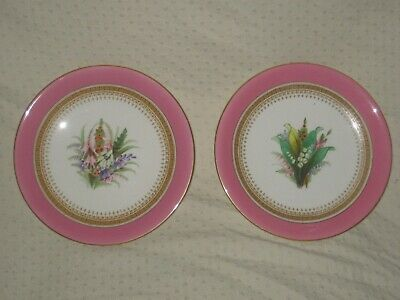 Superb Pair Of  Antique Royal Worcester Cabinet. Hand Painted Floral  Plates