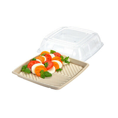 10x Disposable Platter w Lid Square 27cm Sabert Compostable Eco Serving Catering
