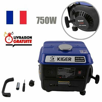Professional Generator essence Home Use 750w Small Gasoline Generator 4.2 l 230V