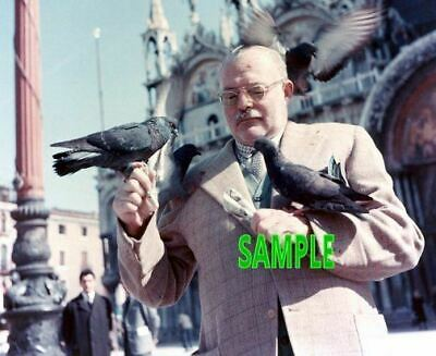 1954 ERNEST HEMINGWAY in VENICE w/ Pigeons Photo