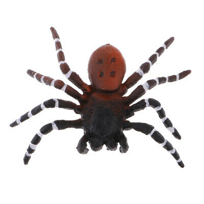 Realistic Animal Model Figures Brazilian Red Spider Kids Pretend Play Toys