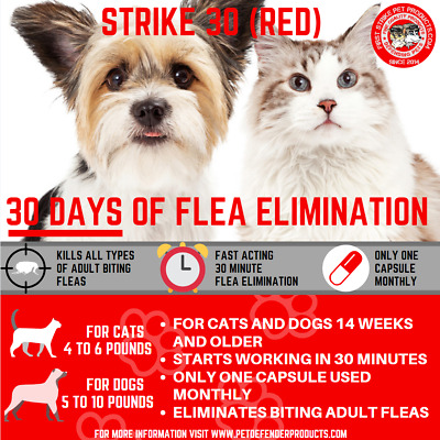 30 day Flea Killer for small dogs and cats 1 capsule per month, 3 capsule pack