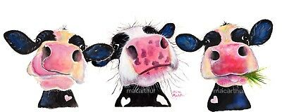 CoW PRiNTS BoX CANVAS CoW ART LARGE XL of Original Painting 'THe NoSeY CoWS ! '