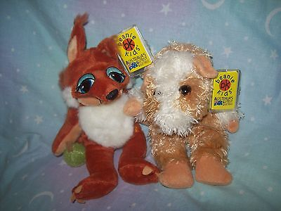 BEANIE KIDS - Munchies the Guinea Pig bear and Nutty the Squirrel bear