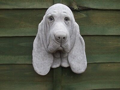 Large  Basset Hound Stone Dogs Head  Wall Sculpture