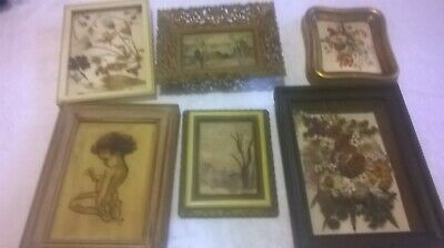 Beautiful Set of 6 Framed Floral and Native Mini Artworks