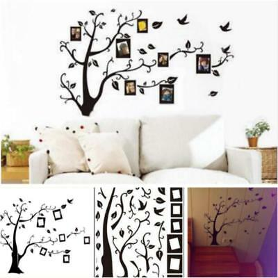 Large Family Tree Birds Photo Frame Quotes Wall Stickers Home Art Decal LJ