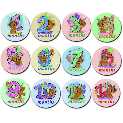 12X Baby Pregnant Monthly Photograph Stickers Month 1-12 Milestone Sticker Bear