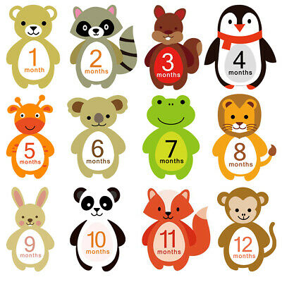 12X Baby Pregnant Monthly Photograph Stickers Month Milestone Sticker Animals