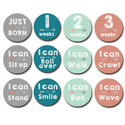 12X Baby Pregnant Monthly Photograph Stickers Month 1-12 Milestone Sticker