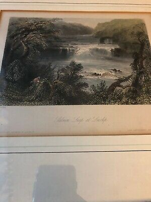 Salmon Leap at Leixlip. Antique Litho/Print WH Bartlett