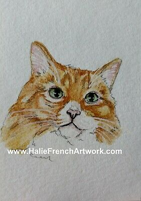 Watercolor Painting original orange & white cream tabby cat art ACEO HalieFrench