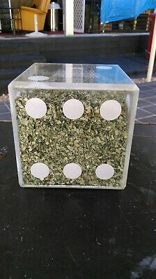 $500,000 Shredded Money US Currency Instant Fortunes dice
