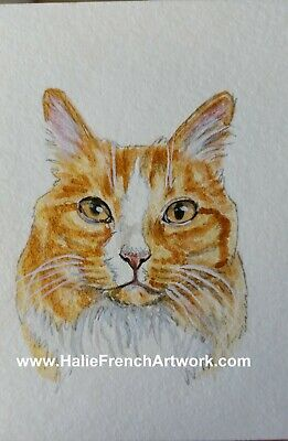 Watercolor Painting Original Pet Art Orange Gold Tabby Cat ACEO HalieFrench