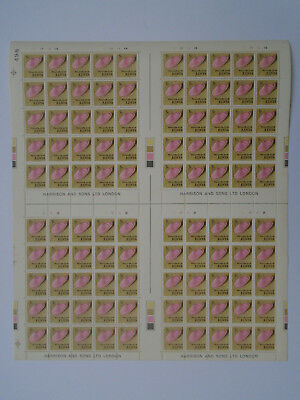 KENYA 1971 SHELLS DEFINITIVE Issue 5.cents value in FULL Sheets three x 100 MNH.
