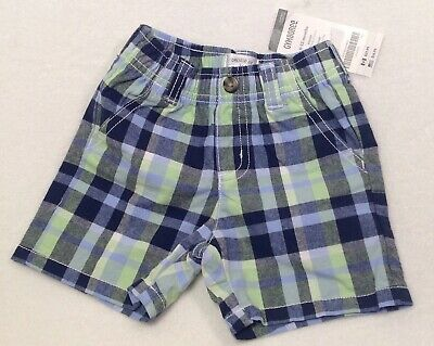 GYMBOREE GREEN BY THE SEASHORE TERRY SHORTS 3 6 12 NWOT