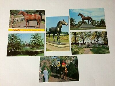 6 Horse Racing Vintage Postcards Swaps Man O' War Chamossaire