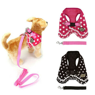 Crown Dog Soft Harness and Leash Small Pet Cat Puppy Vest Walking Safety Control