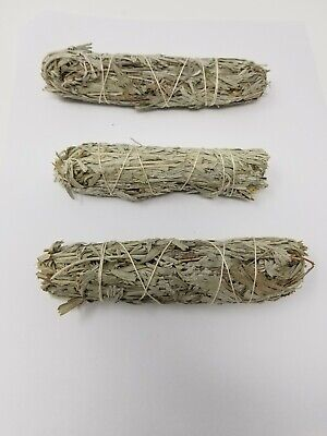 Blue Sage Smudge Stick: 3 Wand Pack (Herb, House Cleansing Negativity Removal)
