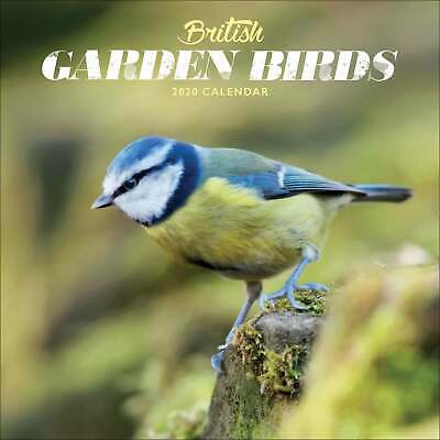 British Garden Birds Mini Calendar 2020