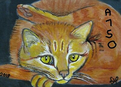 "A750    Original Acrylic Aceo Painting By Ljh    ""Pretzel Cat""      Kitten"