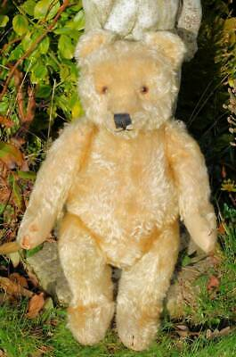 """'FLORENCE' ADORABLE LARGE OLD ANTIQUE STEIFF BEAR  20"""" - 1950's LOVELY FACE"""