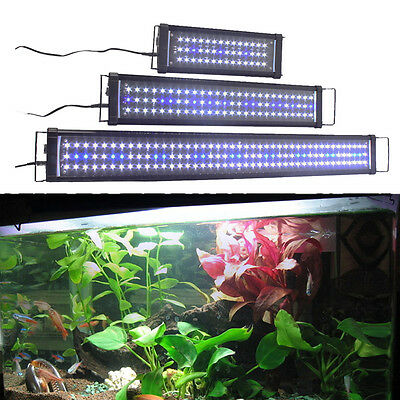 Aquarium LED Lighting Marine Aqua Fish Tank Blue & White Light Over-Head Lamp