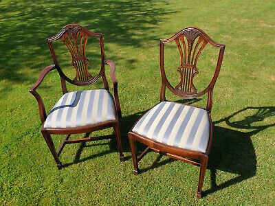8 Mahogany Hepplewhite Style Dining Chairs (GT Rackstraw)  - excellent condition