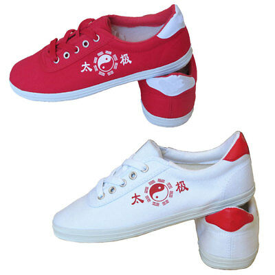 Adult Kid Taekwondo Shoes Unisex Flats Kung Fu Tai Chi Martial Art Zsell