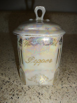 Vintage Victoria Czecho-Slovakia China Pepper Canister Ceramic Porcelain Lid