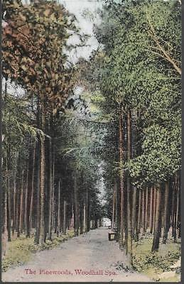 Woodhall Spa, Lincolnshire - Pinewoods - card by Jay Em Jay, Alford pmk 1906