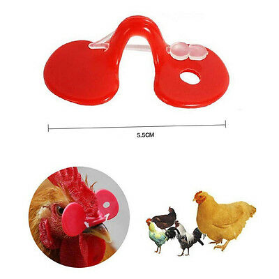 10pcs Creative Chicken Eyes Glasses Avoid Hen peck each other chicken farm LI