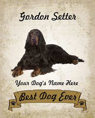 Gordon Setter Dog Personalized Art Home Decor 8x10 Photo Picture Custom