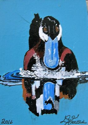 """A353        Original Acrylic  Aceo Painting By Ljh       """"Ruddy Duck"""""""