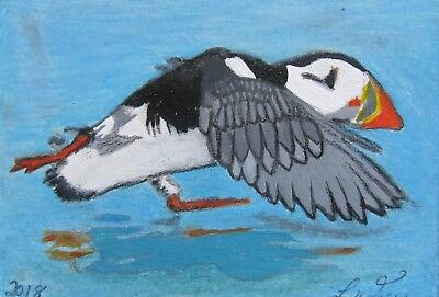 "A636    Original Acrylic  Aceo Painting By Ljh  ""Puffin""  Bird"