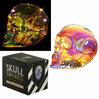 Metallic Iridescent Large LED Light Skull