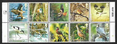 GB 2007 Action for Species Birds 1st class x 10 u/m mnh stamps SG 2764-2773