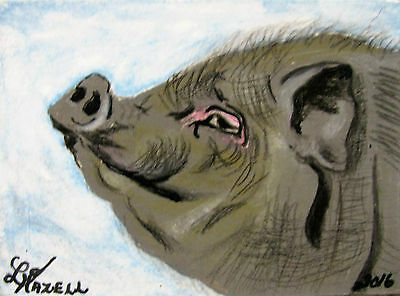 "A297     Original Acrylic Aceo Painting By Ljh       ""Mr Pig"""