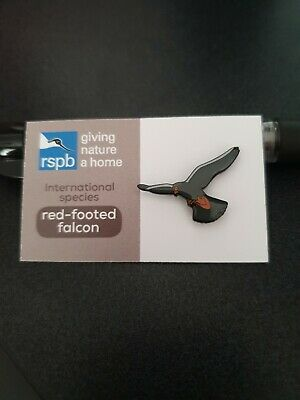 RSPB International Species Red footed Falcon  pin badge