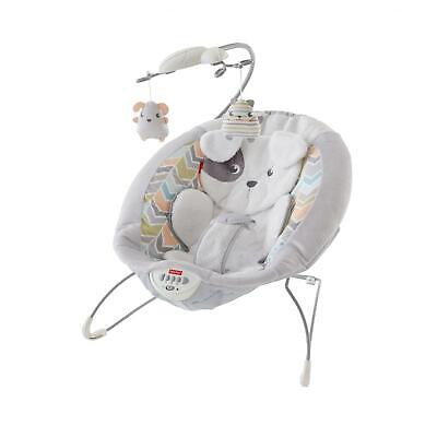 Fisher-Price® Sweet Snugapuppy Dreams Bouncer - Free Shipping