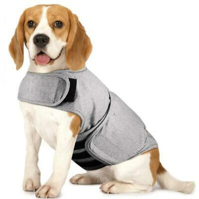 Royal Wise Dog Thunder Jacket Comfort Anti Anxiety Stress Relief L, Gray