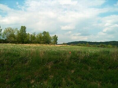 Down payment on Real estate in New York - Allegany County - 4.93 acres - Views