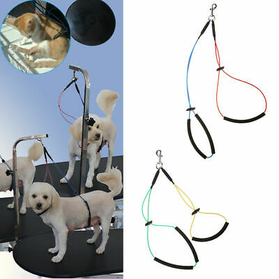 Pet Dog Cat Grooming Table Arm Noose Loop Restraint Rope Harness Holder Line S/L