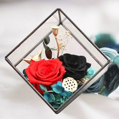 1PC Immortalized Flower Beautiful Gifts for Birthday Christmas Thanksgiving Day
