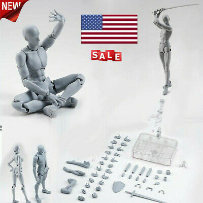 Luxe S.H.Figuarts Body Kun Chan DX Set Drawing Figures for Artists Woman Man USA