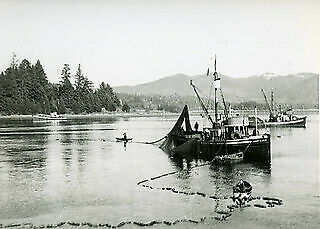 Photo:Herring seiner, Snow Cloud, setting nets in Barclay Sound (B.C.) 294