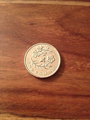 £1 One Pound Coin NI Floral Flax & Shamrock Emblem 2014 (Circulated)